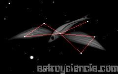 Figura de la constelación del Pez Volador