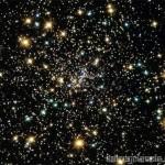 ¿Que quiere decir Cosmos?