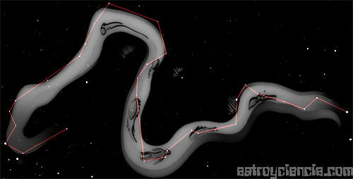 Figura de la constelación de Erídano (El Río)