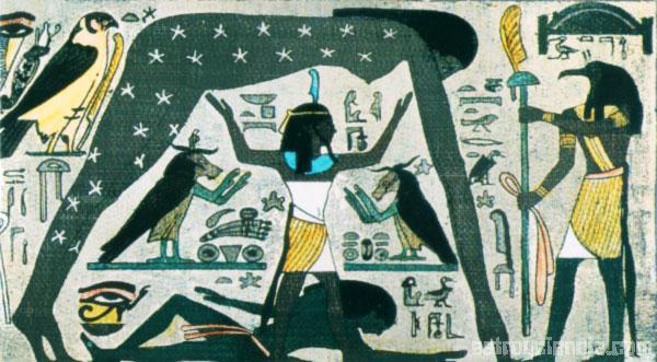 Cosmos Egipcio