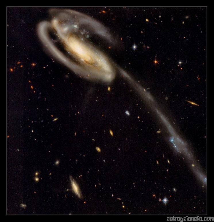 El Renacuajo, colision de galaxias (UGC 10214)