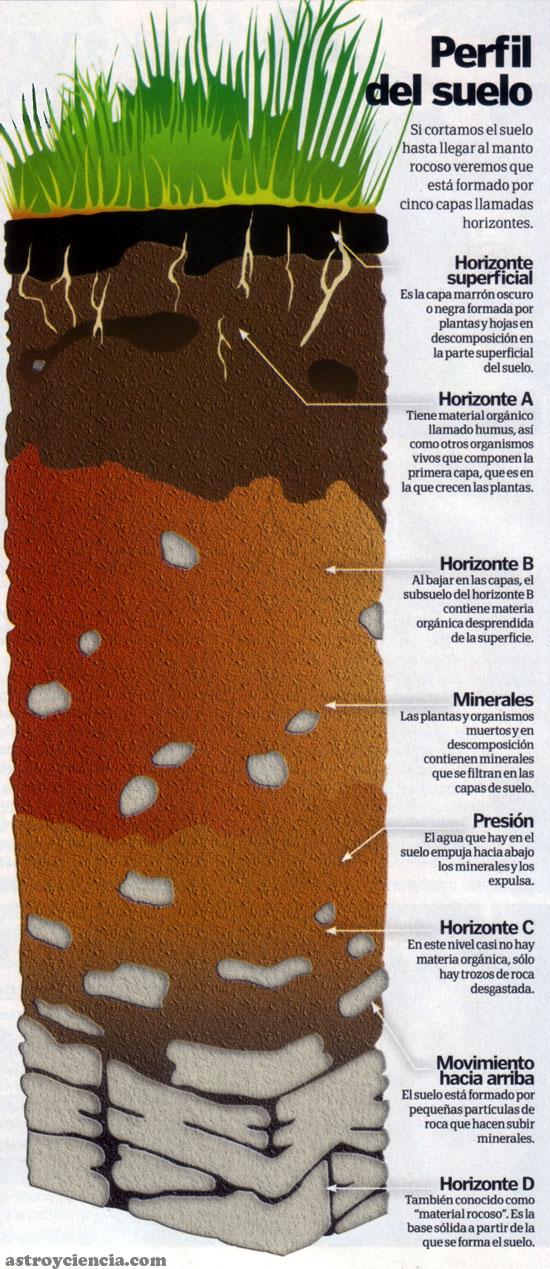 Paisajelandia los suelos for El suelo y sus capas