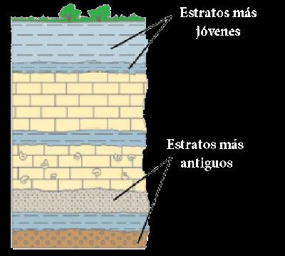 estratigrafía