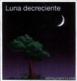 Fase de la Luna decreciente en el hemisferio sur, con forma de D