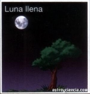 Fase de la Luna llena, se ve igual en ambos  hemisferios