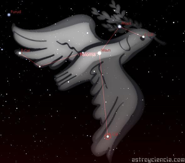 Figura de la constelación de la Paloma