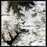 Imágenes de la Tierra 10: El Monte Everest
