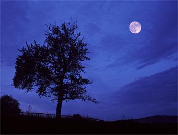 La Tierra debe tener otra Luna