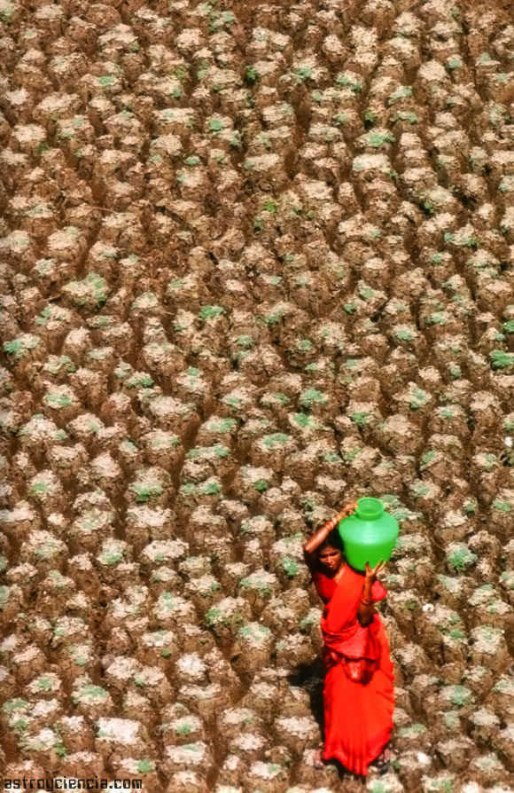 Sequía Extrema: A la espera del Monzón