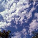 ¿Hay tipos de nubes concretos que predigan los truenos?