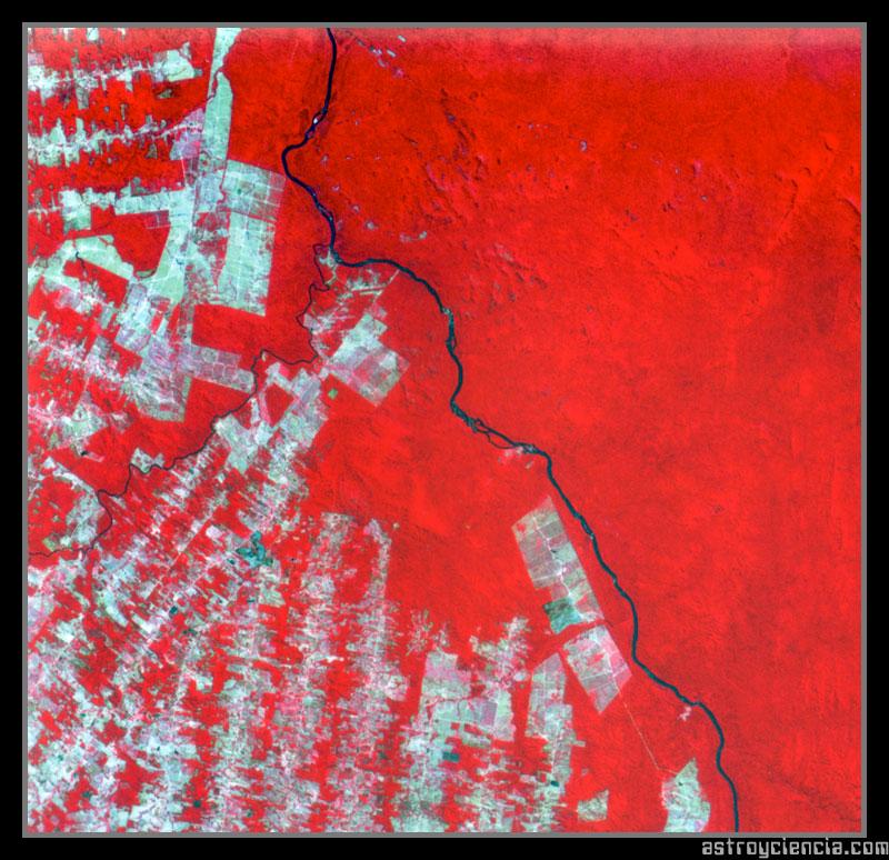 Deforestación Amazónica en Brasil